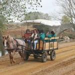 Canal-de-Castilla-y-los-caminos-de-sirga
