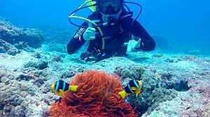 Islas Madivas Paraiso