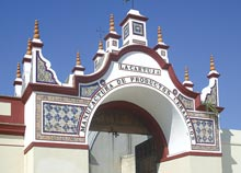 Real Maestranza Sevilla
