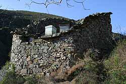 Asturias Cortines de Tineo
