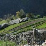 Asturias Tineo