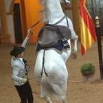 Real Escuela Ecuestre Jerez de la Frontera
