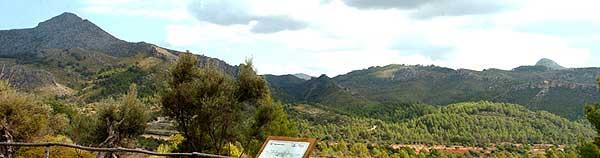 Galatzo Calvia Mallorca