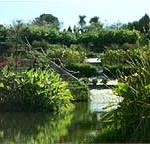 Jardin de la Rabida