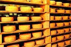 Conservación del queso