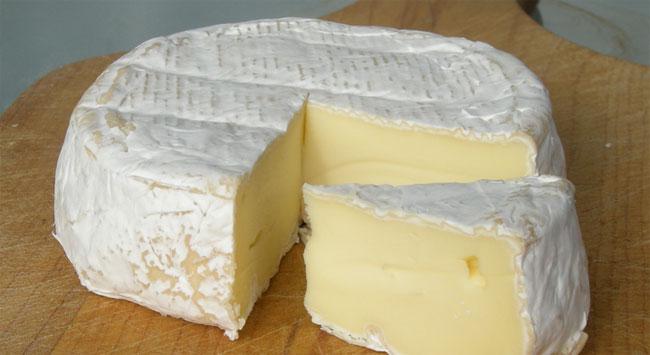 queso_camembert