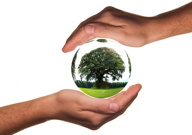 Bolsas reutilizables de Eco Swap