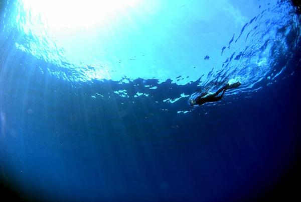 Las siete mejores locaciones para practicar snorkel en Ibiza