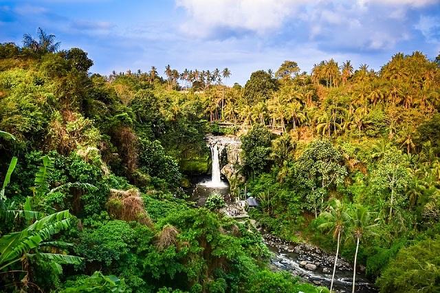 Conocer Bali en 7 días